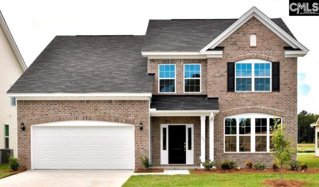 275 Wading Bird Loop, Blythewood, SC 29016 (MLS #459310) :: EXIT Real Estate Consultants