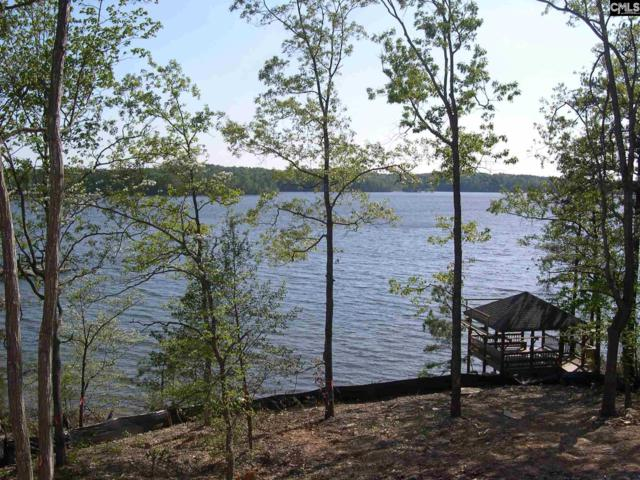 469 Wood Willow Point, Chapin, SC 29036 (MLS #459351) :: EXIT Real Estate Consultants