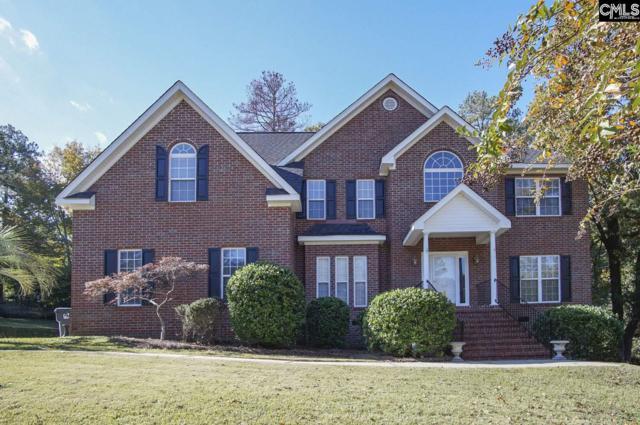 313 Carola Ln, Lexington, SC 29072 (MLS #459378) :: Home Advantage Realty, LLC
