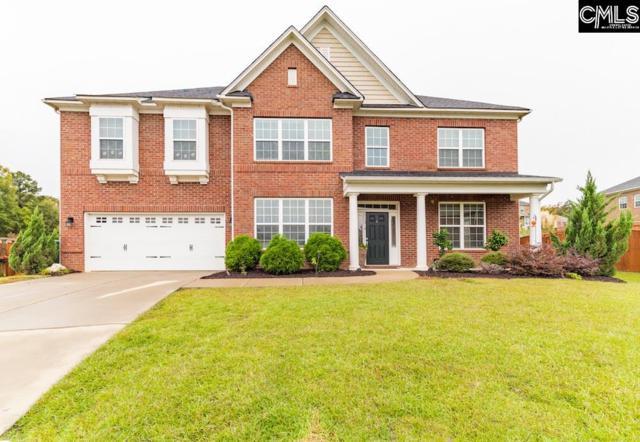 38 Bards Court, Irmo, SC 29063 (MLS #459433) :: Home Advantage Realty, LLC