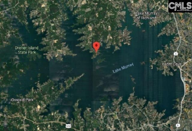 Libby Ariail Circle, Chapin, SC 29036 (MLS #459481) :: The Olivia Cooley Group at Keller Williams Realty
