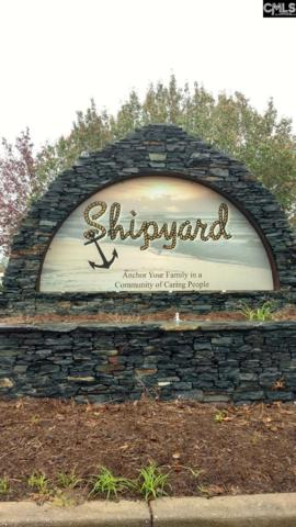 128 Shipyard Boulevard, Chapin, SC 29036 (MLS #459556) :: Home Advantage Realty, LLC