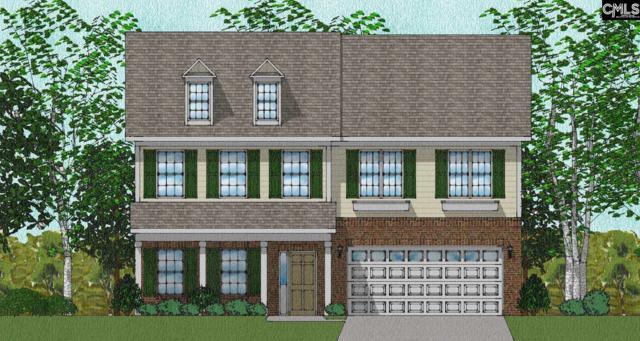 436 Stillwater Lane #96, Elgin, SC 29045 (MLS #459564) :: EXIT Real Estate Consultants