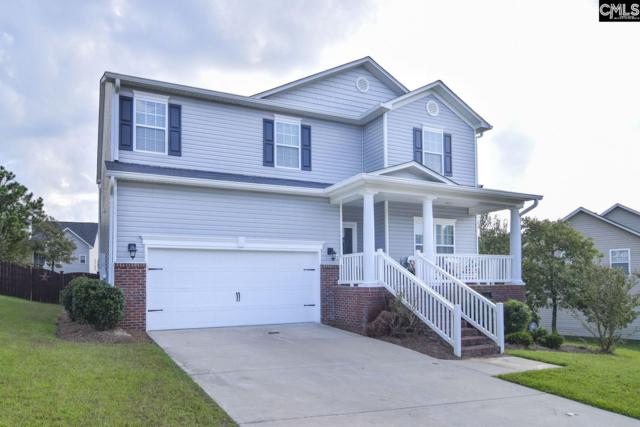 230 Longtown Place Drive, Columbia, SC 29229 (MLS #459594) :: EXIT Real Estate Consultants