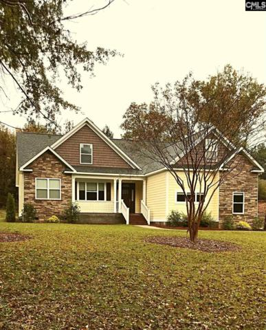 1905 Hollingshed Road, Irmo, SC 29063 (MLS #459604) :: RE/MAX AT THE LAKE