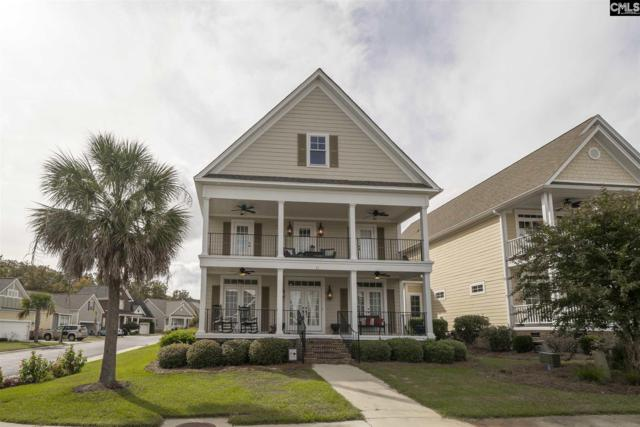 32 Downing Circle, Gilbert, SC 29054 (MLS #459616) :: EXIT Real Estate Consultants