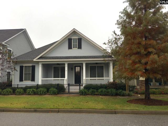 178 Glade Spring Drive, Lexington, SC 29072 (MLS #459648) :: The Olivia Cooley Group at Keller Williams Realty