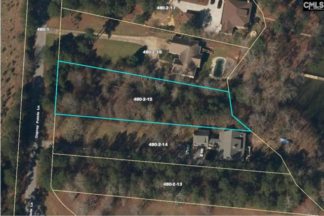 Osprey Pointe Lane, Prosperity, SC 29127 (MLS #459670) :: RE/MAX AT THE LAKE