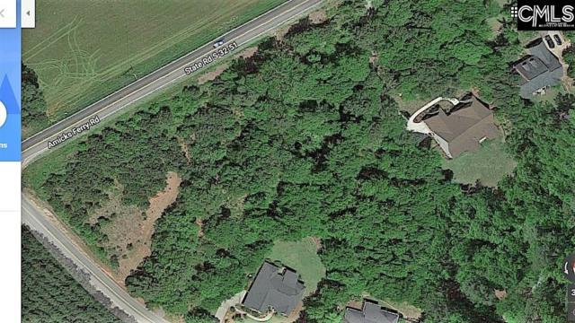 113 Laketide Drive, Chapin, SC 29036 (MLS #459698) :: EXIT Real Estate Consultants