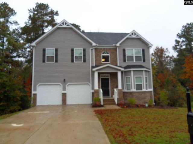 715 Soldier Gray Lane, Chapin, SC 29036 (MLS #459832) :: EXIT Real Estate Consultants