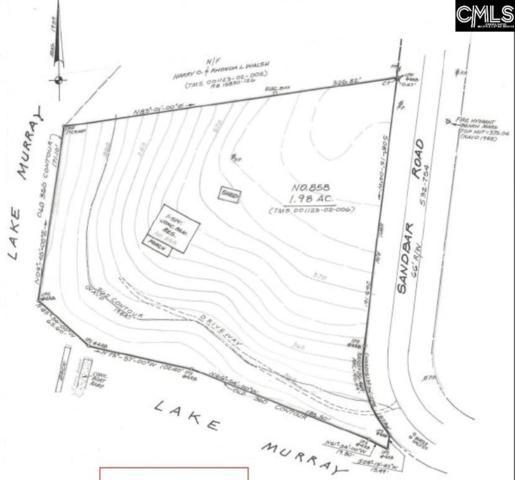 858 Sandbar Road, Chapin, SC 29036 (MLS #459916) :: The Olivia Cooley Group at Keller Williams Realty