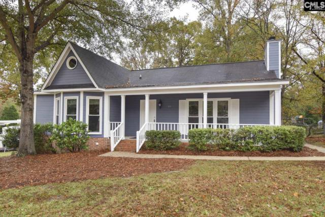 105 Bowhill Court, Irmo, SC 29063 (MLS #459928) :: EXIT Real Estate Consultants