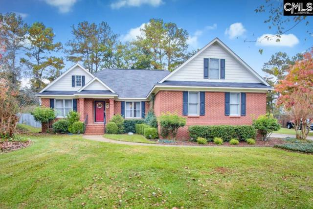 204 Chancery Lane, Columbia, SC 29229 (MLS #459933) :: The Olivia Cooley Group at Keller Williams Realty