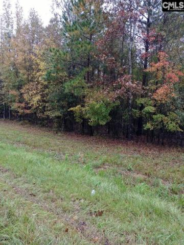 TBD Hwy 321 And Cowhorn, Blythewood, SC 29016 (MLS #459942) :: The Olivia Cooley Group at Keller Williams Realty