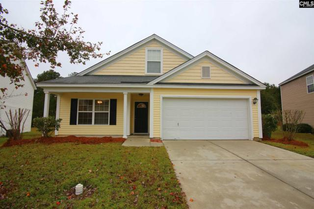 161 Summer Side, Columbia, SC 29223 (MLS #459954) :: The Olivia Cooley Group at Keller Williams Realty
