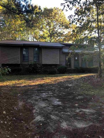 14 Greys Court, Columbia, SC 29209 (MLS #459972) :: EXIT Real Estate Consultants
