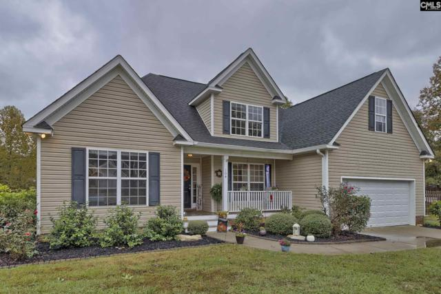 104 Sawyers Court, Chapin, SC 29036 (MLS #460003) :: The Olivia Cooley Group at Keller Williams Realty