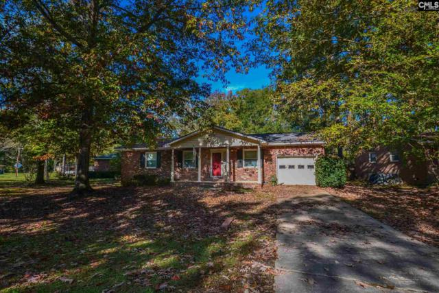 520 Pitney Road, Columbia, SC 29212 (MLS #460007) :: The Olivia Cooley Group at Keller Williams Realty