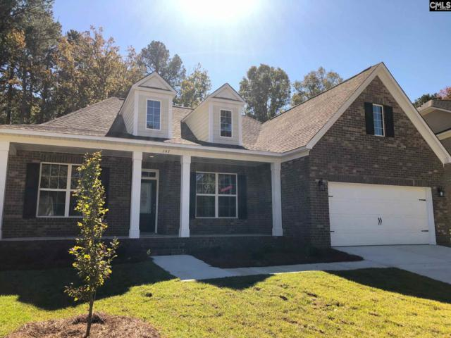 246 Cedar Hollow Lane, Irmo, SC 29063 (MLS #460024) :: The Olivia Cooley Group at Keller Williams Realty