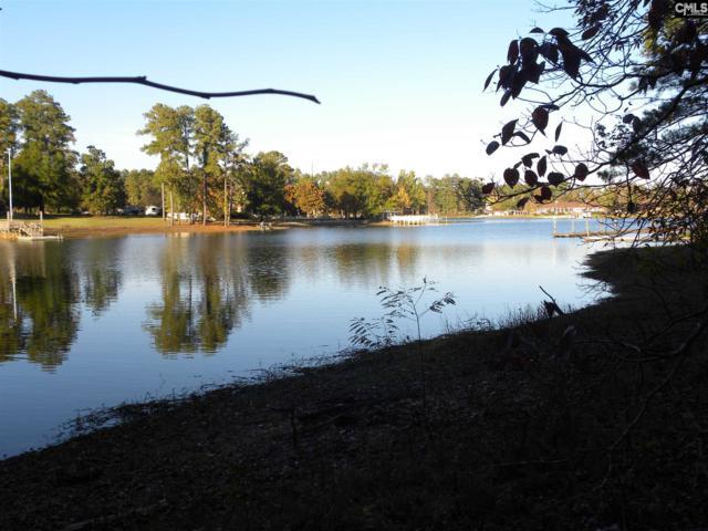 311 Indian Creek Circle #2, Chapin, SC 29036 (MLS #460038) :: The Olivia Cooley Group at Keller Williams Realty