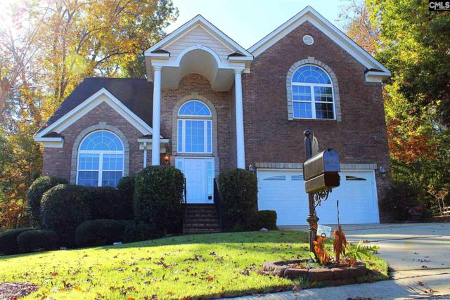 220 Shores Edge Drive, Chapin, SC 29036 (MLS #460061) :: EXIT Real Estate Consultants