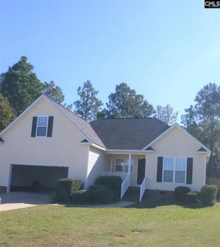 256 Hodson Hall Drive, Columbia, SC 29229 (MLS #460081) :: Home Advantage Realty, LLC