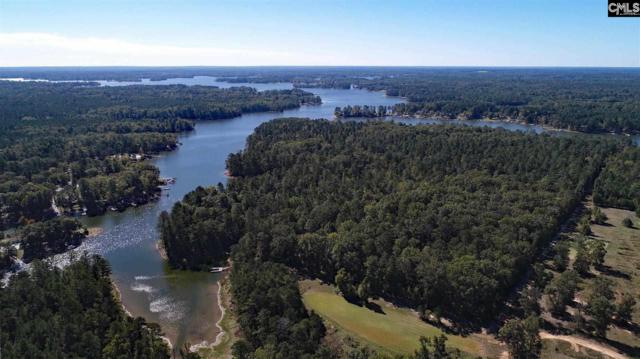 378 Stockman Road Lot U, Prosperity, SC 29127 (MLS #460150) :: Resource Realty Group