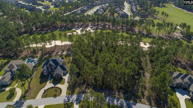 160 Island View Circle, Elgin, SC 29045 (MLS #460192) :: EXIT Real Estate Consultants