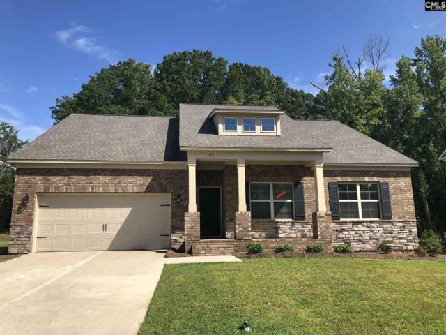 140 Cedar Chase Lane, Irmo, SC 29063 (MLS #460216) :: Home Advantage Realty, LLC