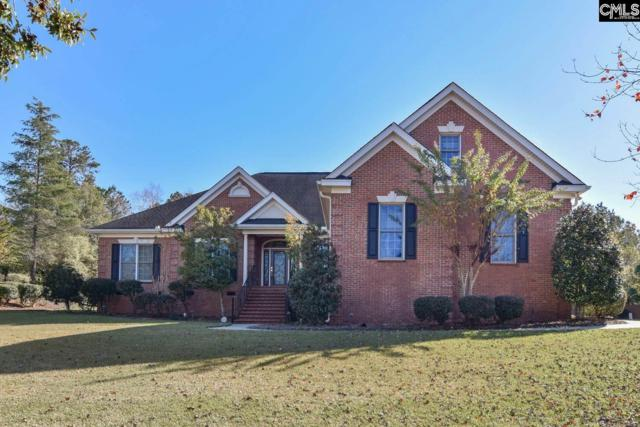 2 Ascot Ridge Court, Irmo, SC 29063 (MLS #460295) :: Home Advantage Realty, LLC