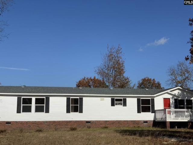116 Oakey Drive, Gaston, SC 29053 (MLS #460316) :: The Neighborhood Company at Keller Williams Columbia