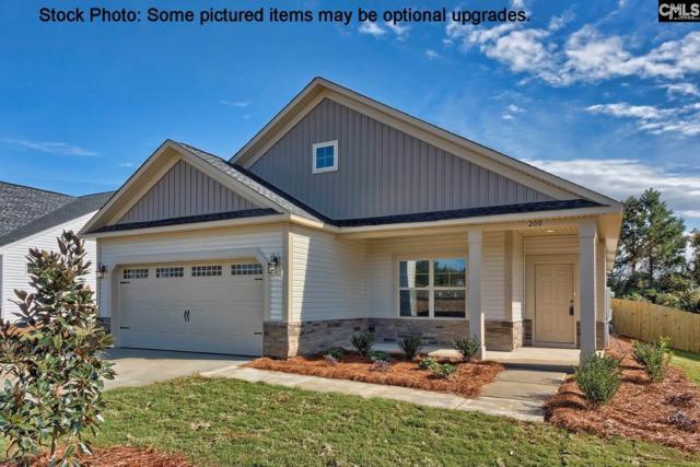 210 Shoals Landing Drive, Columbia, SC 29212 (MLS #460369) :: Home Advantage Realty, LLC
