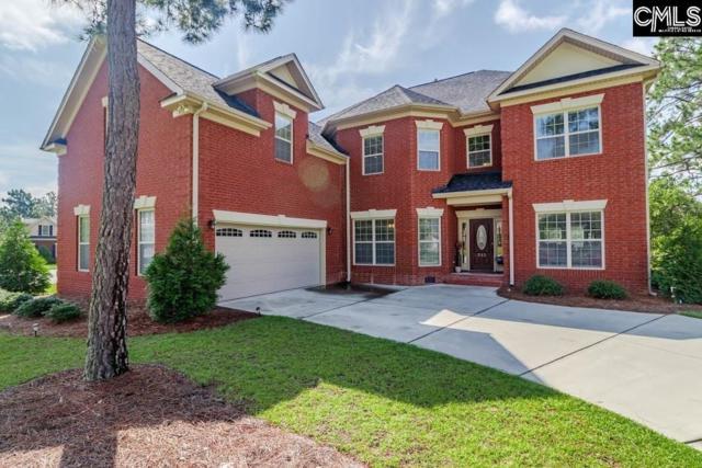 232 Peninsula Way, Columbia, SC 29229 (MLS #460421) :: Home Advantage Realty, LLC