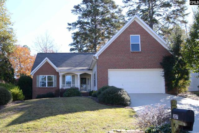 307 Angus Drive, Columbia, SC 29223 (MLS #460437) :: Home Advantage Realty, LLC
