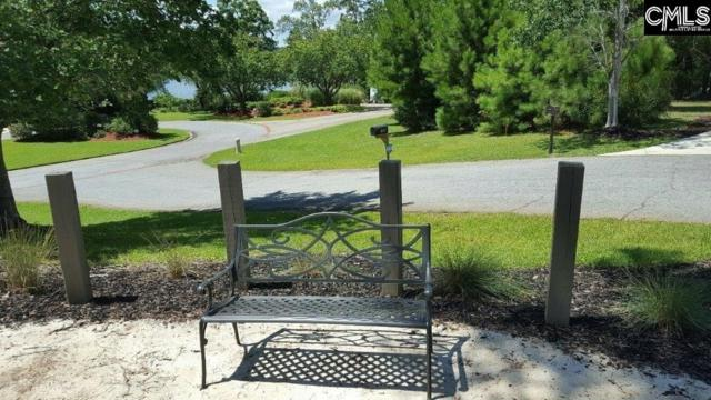 128 Laguna Vista Lot #2 Lot #2, Irmo, SC 29063 (MLS #460455) :: EXIT Real Estate Consultants