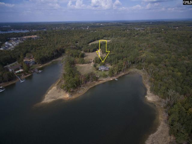 80 Muskrat Run, Irmo, SC 29063 (MLS #460472) :: EXIT Real Estate Consultants