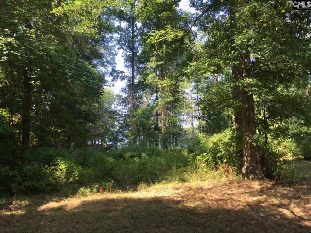 0 Holley Ferry Road, Leesville, SC 29070 (MLS #460487) :: Home Advantage Realty, LLC