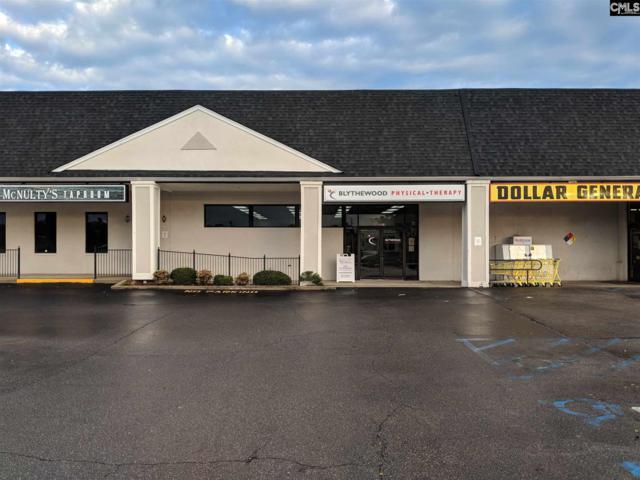 420 Mcnulty Street B, Blythewood, SC 29016 (MLS #460545) :: Home Advantage Realty, LLC