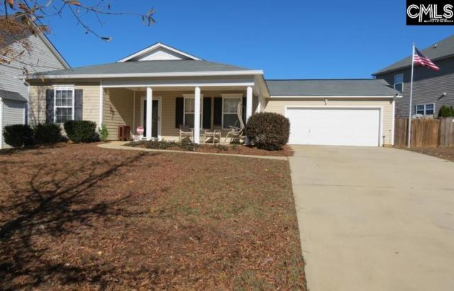 377 Foxport Drive, Chapin, SC 29036 (MLS #460613) :: Home Advantage Realty, LLC