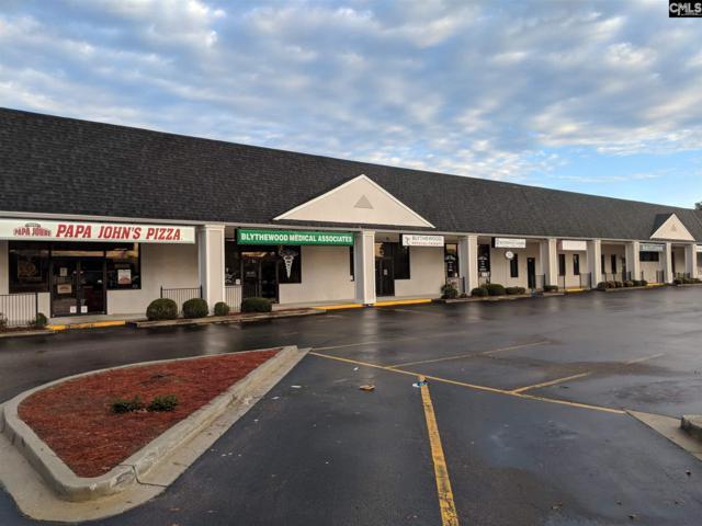 428 Mcnulty Street C, D, & 1-4, Blythewood, SC 29016 (MLS #460709) :: Home Advantage Realty, LLC