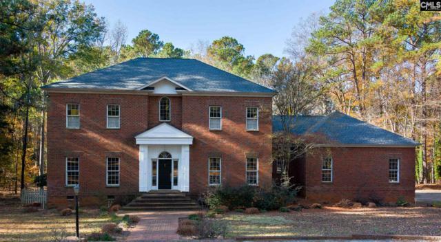 137 Blue Church Court, Columbia, SC 29212 (MLS #460754) :: EXIT Real Estate Consultants
