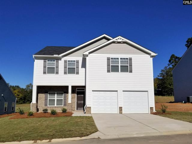 507 Grant Park Court, Lexington, SC 29072 (MLS #460774) :: The Olivia Cooley Group at Keller Williams Realty