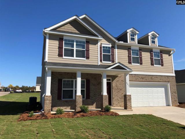 519 Grant Park Court, Lexington, SC 29072 (MLS #460816) :: EXIT Real Estate Consultants