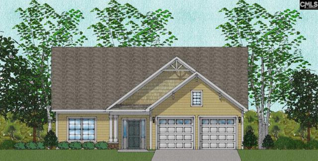 131 Fitzwarin Court 62, Lexington, SC 29072 (MLS #460841) :: EXIT Real Estate Consultants