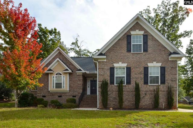 201 Quiet Cove Court, Chapin, SC 29036 (MLS #460974) :: Home Advantage Realty, LLC
