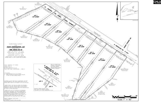 339 N Brickyard Rd. Road 6, Columbia, SC 29223 (MLS #461009) :: EXIT Real Estate Consultants