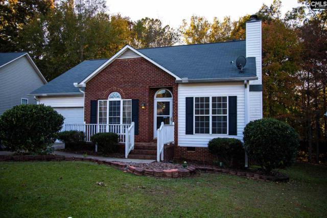 415 Caddis Creek Road, Irmo, SC 29063 (MLS #461013) :: Home Advantage Realty, LLC