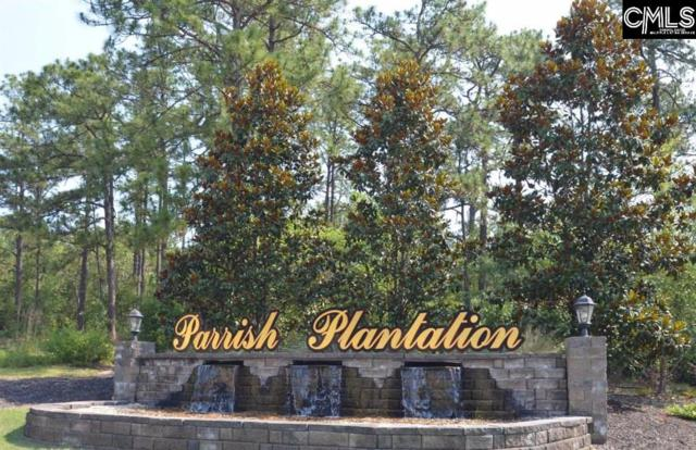 106 Parrish Pond Drive #48, West Columbia, SC 29170 (MLS #461022) :: EXIT Real Estate Consultants