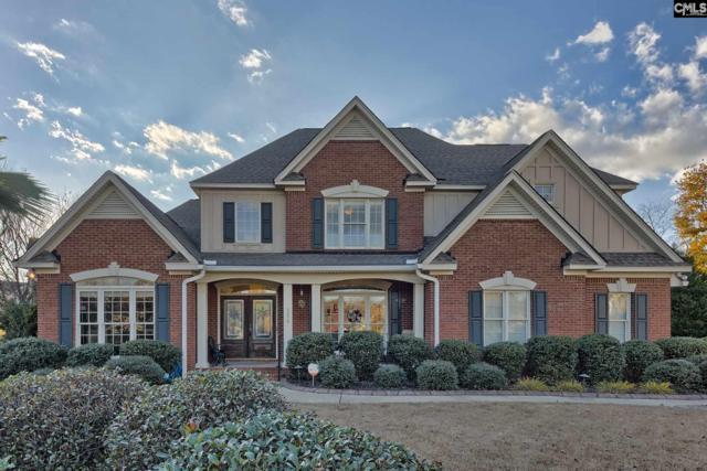 108 Summer Gate Court, Lexington, SC 29072 (MLS #461026) :: EXIT Real Estate Consultants