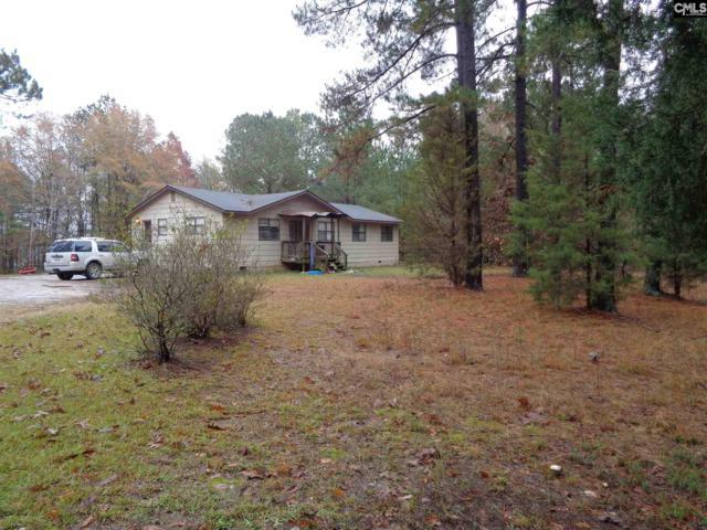316 Rocky Meadows Road, Irmo, SC 29063 (MLS #461090) :: EXIT Real Estate Consultants
